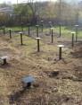Винтовой фундамент и почвы